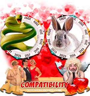 Snake Rabbit Zodiac signs Compatibility Horoscope