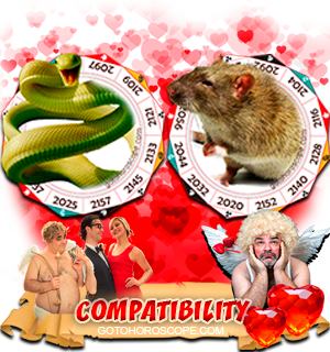 Snake Rat Zodiac signs Compatibility Horoscope