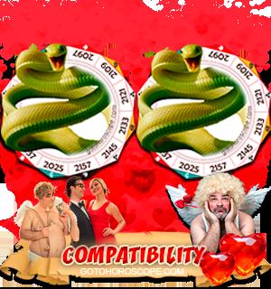 Snake Snake Zodiac signs Compatibility Horoscope