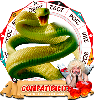 Chinese Zodiac sign Snake Compatibility Horoscope