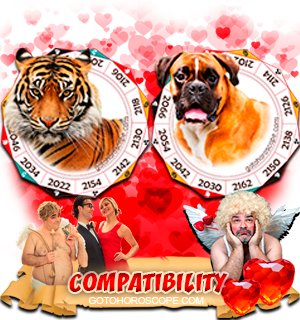 Tiger Dog Zodiac signs Compatibility Horoscope