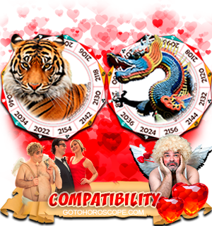 Tiger Dragon Zodiac signs Compatibility Horoscope