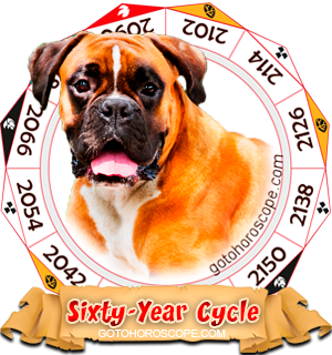 Dog Year, Chinese Astrology