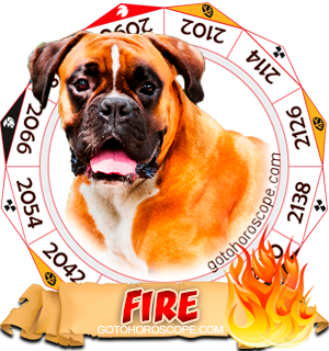Fire Dog Chinese Astrology Animal Zodiac Personality Horoscope