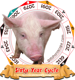 Pig Year, Chinese Astrology