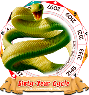 Snake Year, Chinese Astrology
