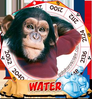 Water Monkey Chinese Astrology Animal Zodiac Personality Horoscope