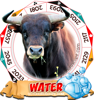 Water Ox Chinese Astrology Animal Zodiac Personality Horoscope