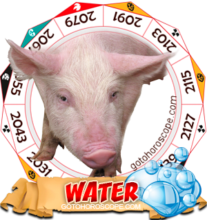 Water Pig Chinese Astrology Animal Zodiac Personality Horoscope
