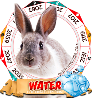 Water Rabbit Chinese Astrology Animal Zodiac Personality Horoscope