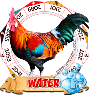 Water Rooster Chinese Astrology Animal Zodiac Personality Horoscope