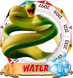 Water Snake Chinese Astrology Animal Zodiac Personality Horoscope