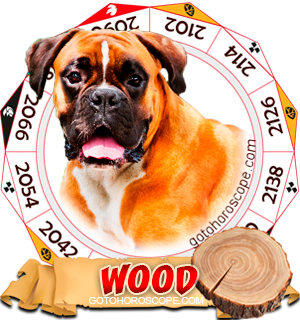 Wood Dog Chinese Astrology Animal Zodiac Personality Horoscope