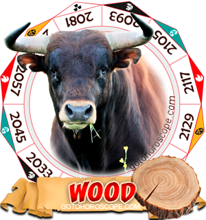 Wood Ox Chinese Astrology Animal Zodiac Personality Horoscope