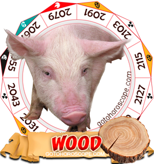 Wood Pig Chinese Astrology Animal Zodiac Personality Horoscope