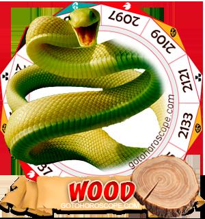 Wood Snake Chinese Astrology Animal Zodiac Personality Horoscope