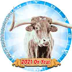 2020 Horoscope for 12 Zodiac Sign