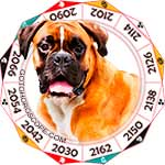 2013 Horoscope for Dog Zodiac Sign