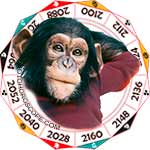 2020 Chinese Horoscope Monkey for the Rat Year