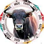 2020 Chinese Horoscope Ox for the Rat Year