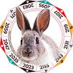 2020 Chinese Horoscope Rabbit for the Rat Year