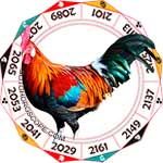 2018 Chinese Horoscope Rooster for the Dog Year