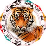 2020 Chinese Horoscope Tiger for the Rat Year
