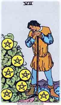 Seven of pentacles Tarot Card Meanings for Minor Arcana