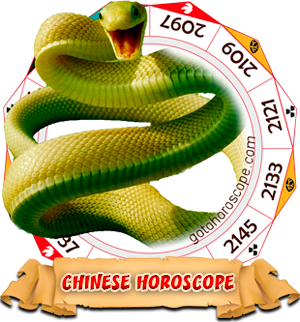 2012 Chinese Horoscope Snake for the Dragon Year